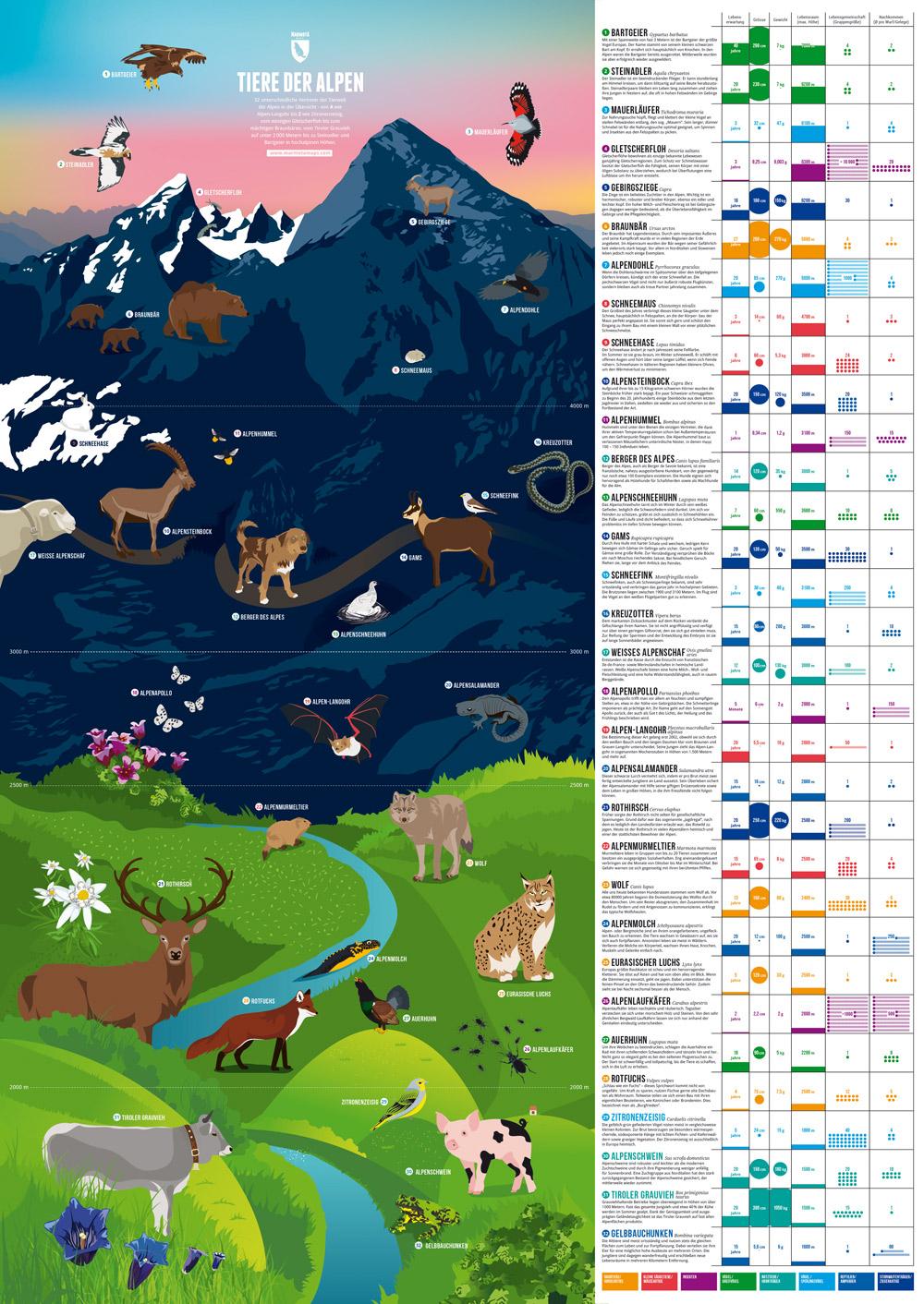 Plakat der 32 Alpentiere - Nahansicht