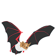 Alpine long-eared bat